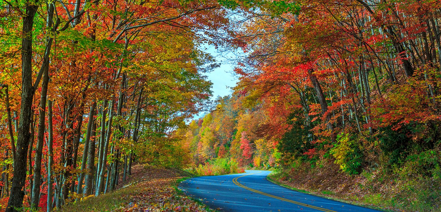 fall-color-milepost-399